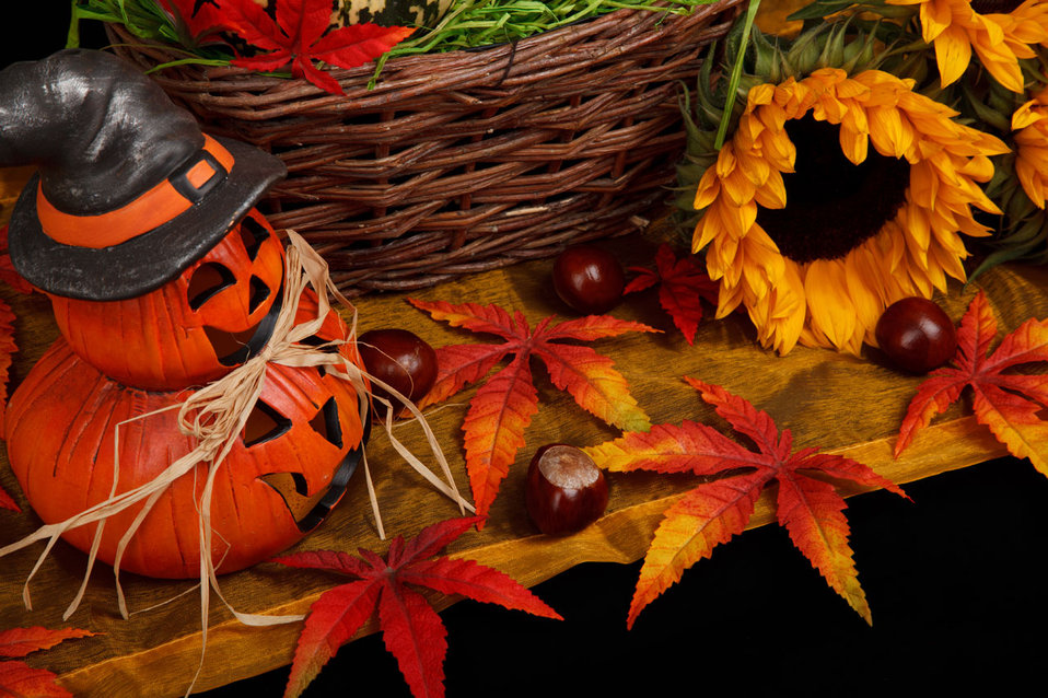 Halloween autumn theme