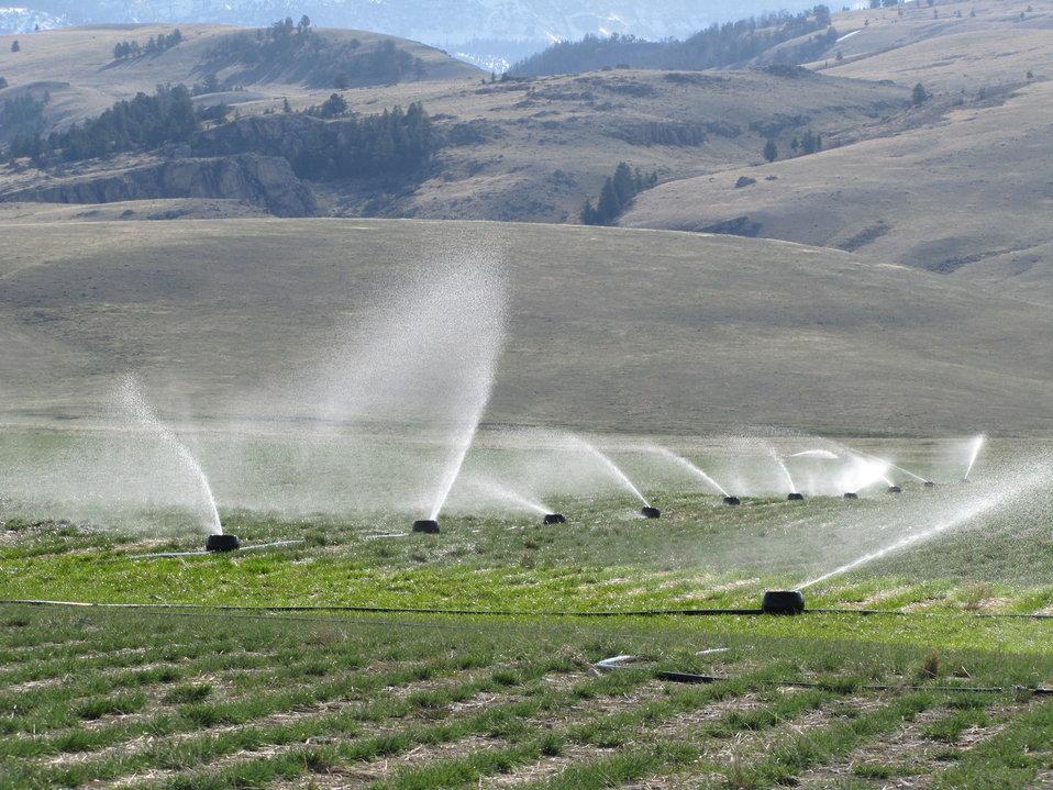 K-Line Irrigation System