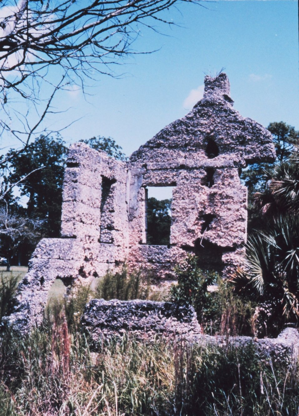 Tabby ruins at Chocolate on the northwest side of the island. Tabby refers to the building material which is a durable cement-like mixture of equal parts of water, sand, shell, and lime. These ruins are part of an antebellum plantation that was deserted