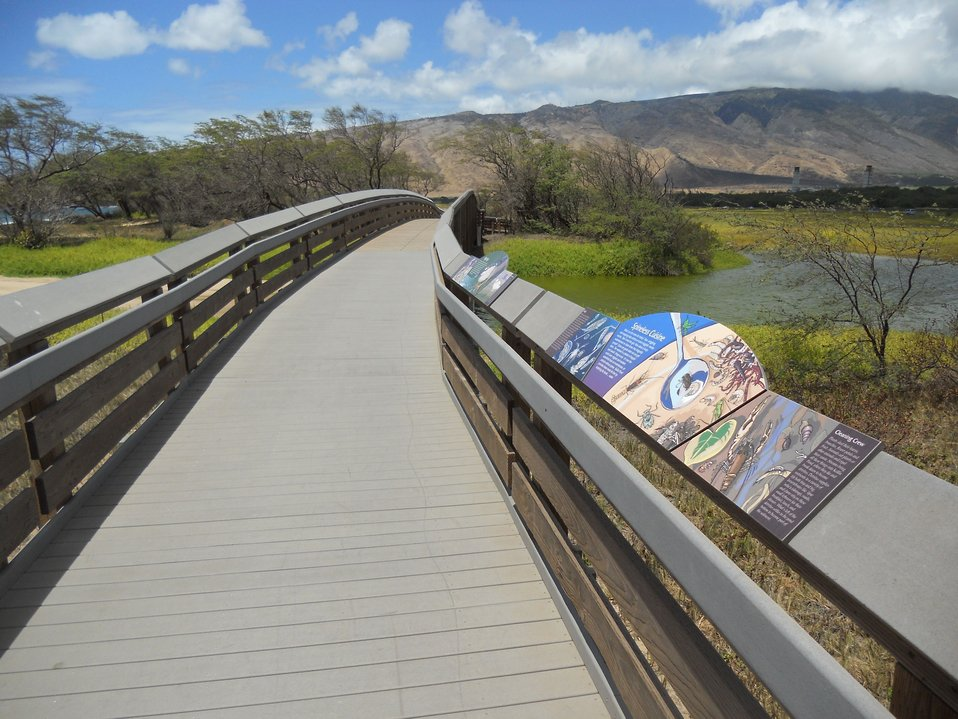 Boardwalk bridge, Kealia Pond, Hawaii