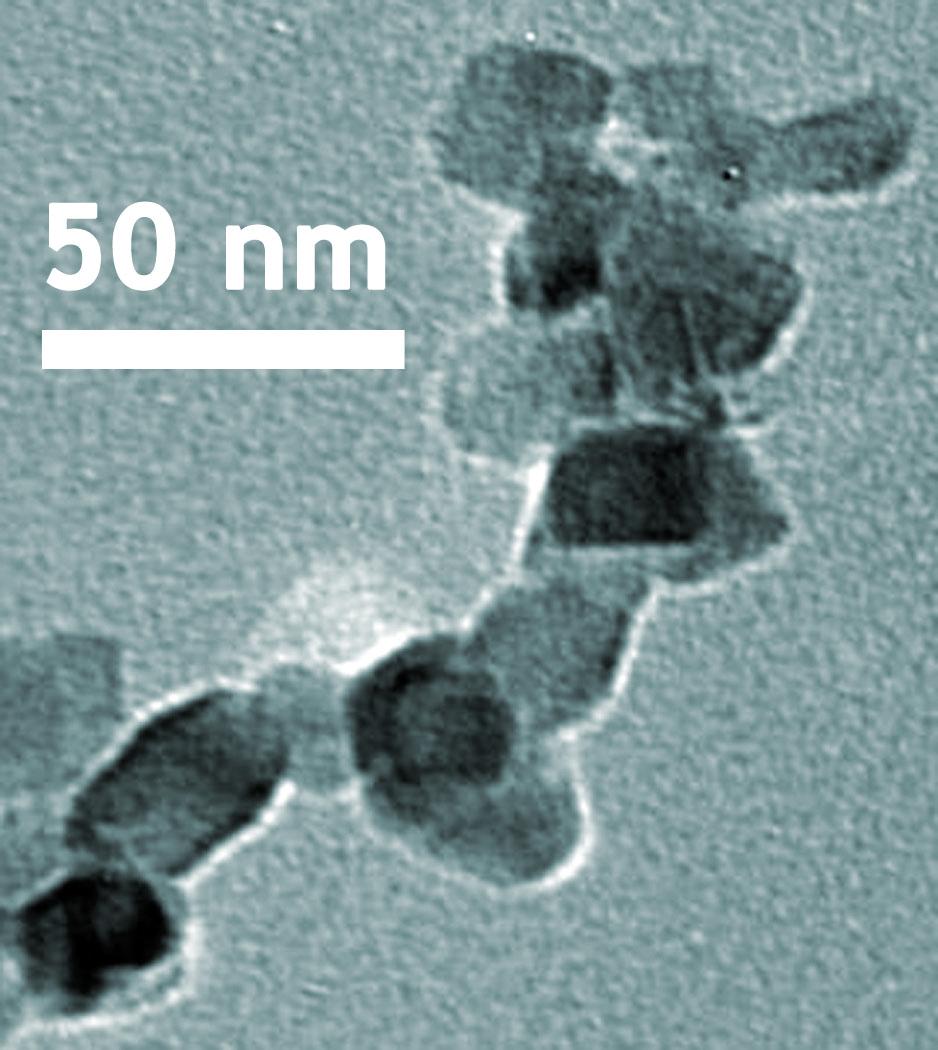 Nanoscale Crystalline Structure of Titanium Dioxide