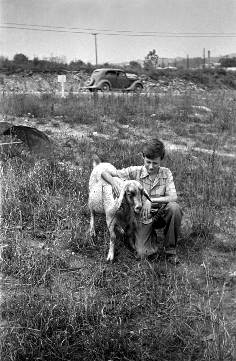 Boy With Goat Oak Ridge 1940s