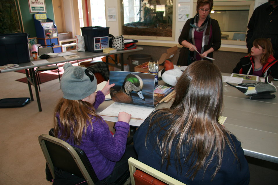 Preparing for the Jr. Duck Stamp Contest - North Dakota