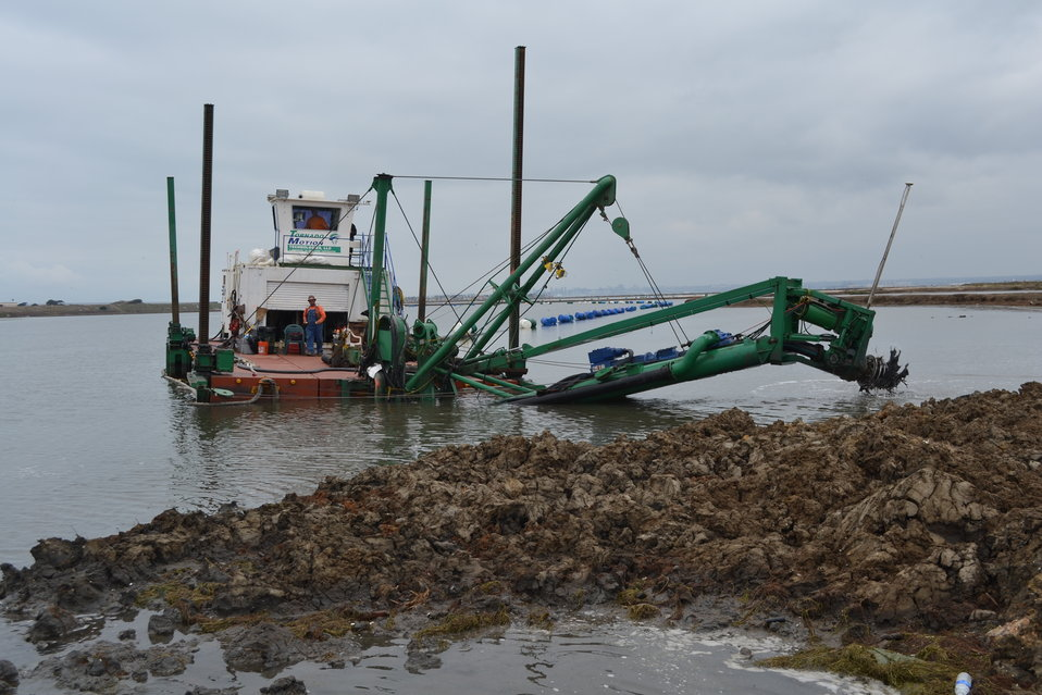 Trash clogging the dredge cutter head during the restoration project