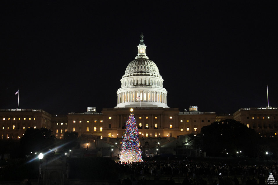 Capitol Christmas Tree - 2012