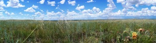 Panoramic View of Bowdoin National Wildlife Refuge