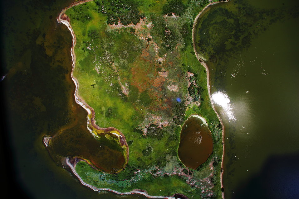 Aerial view of large nesting island