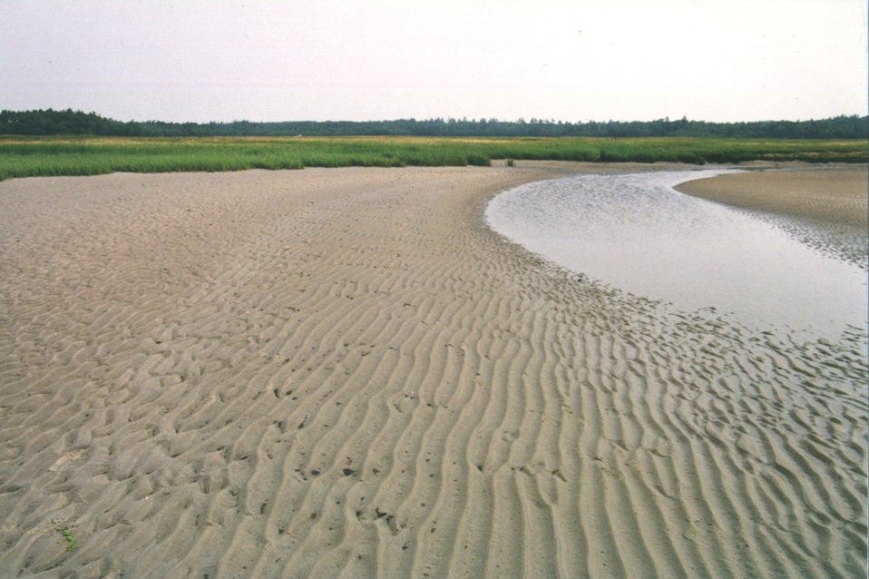 Tidal stream at low tide showing parallel ripple pattern in deeper areas versus hummocky pattern in shallower areas.  Parallel ripples form perpendicular  to tidal flow.