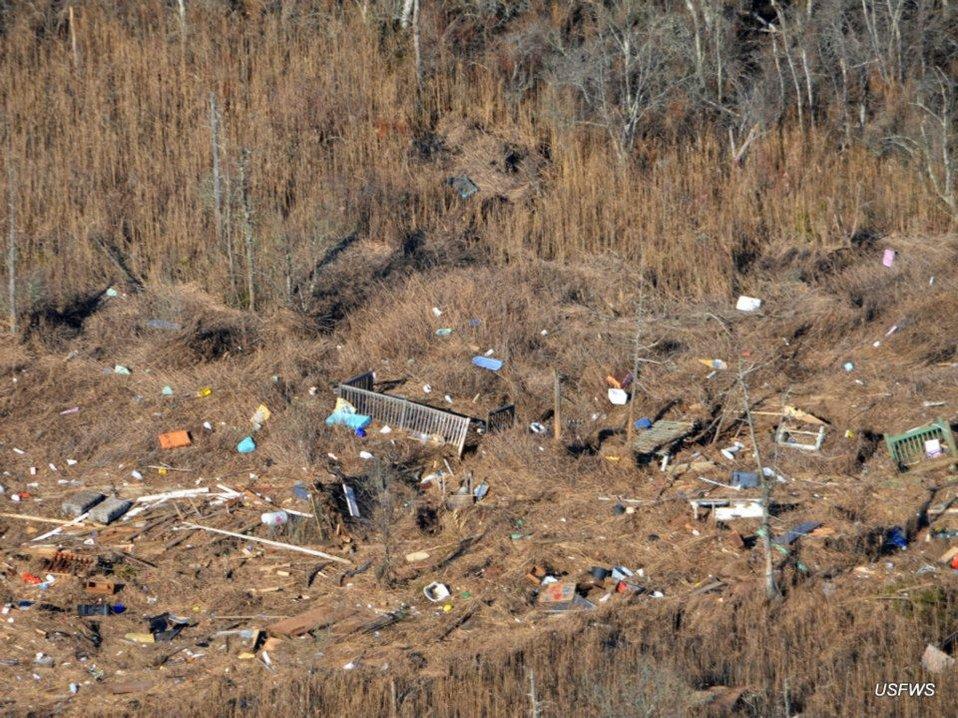 Hurricane Sandy debris at Edwin B. Forsythe Refuge