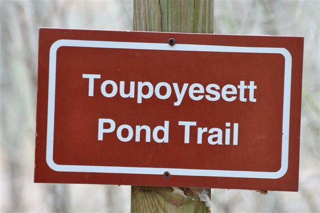 Toupoyesett Pond Trail
