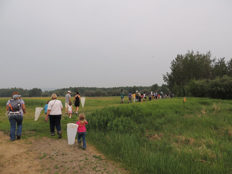 Guided nature walks at Creamer's Field