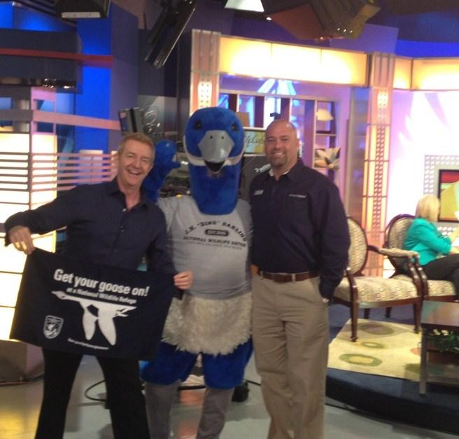 Blue Goose, Fox 4 Morning Blend, Wild Bill