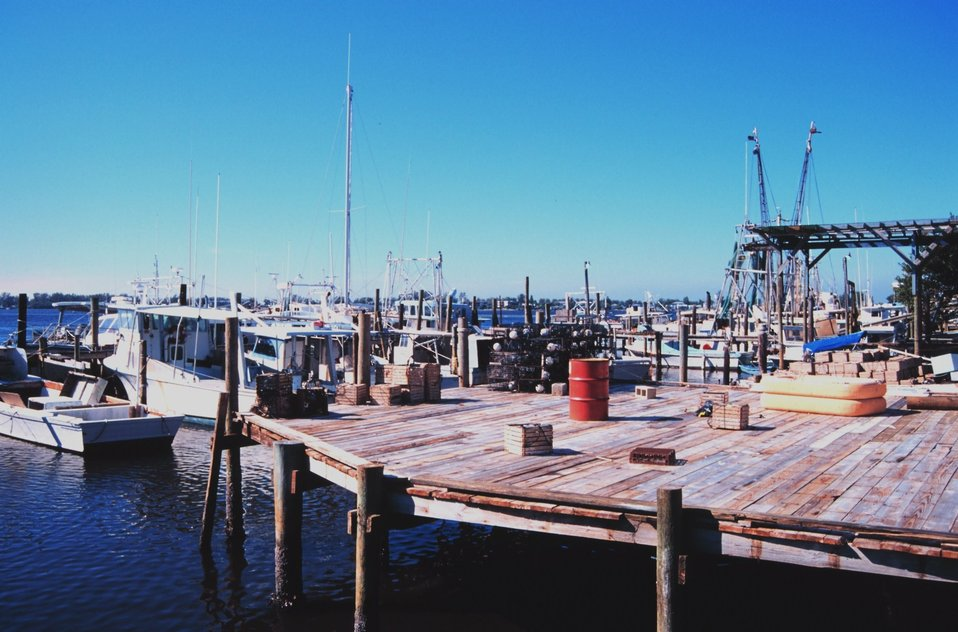 Shrimp, snapper, grouper, and stone crab fishing boats at A. P. Bell Fish Co.