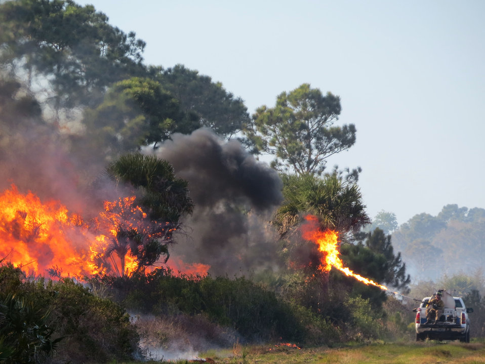 Merritt Island RX Fire Unit 4.2 03/08/14