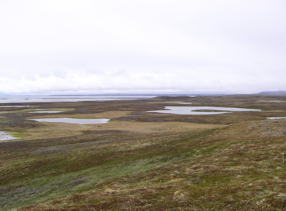 Izembek Wilderness