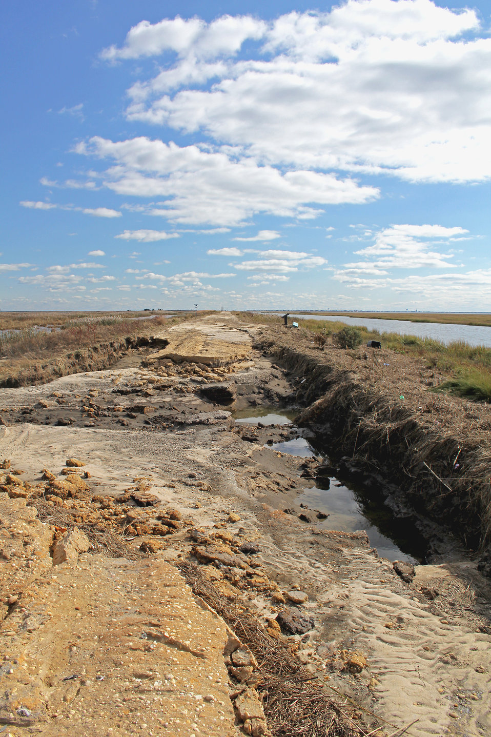 Superstorm Sandy damages to the Edwin B. Forsythe National Wildlife Refuge Wildlife Drive (NJ)