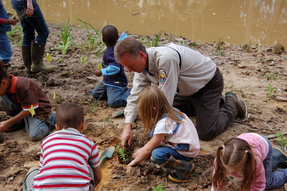 Planting a schoolyard wetland