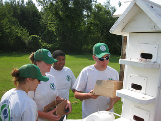 YCC students checking purple martin houses