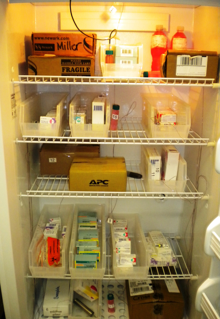 Vaccine; Temperature; Refrigerator