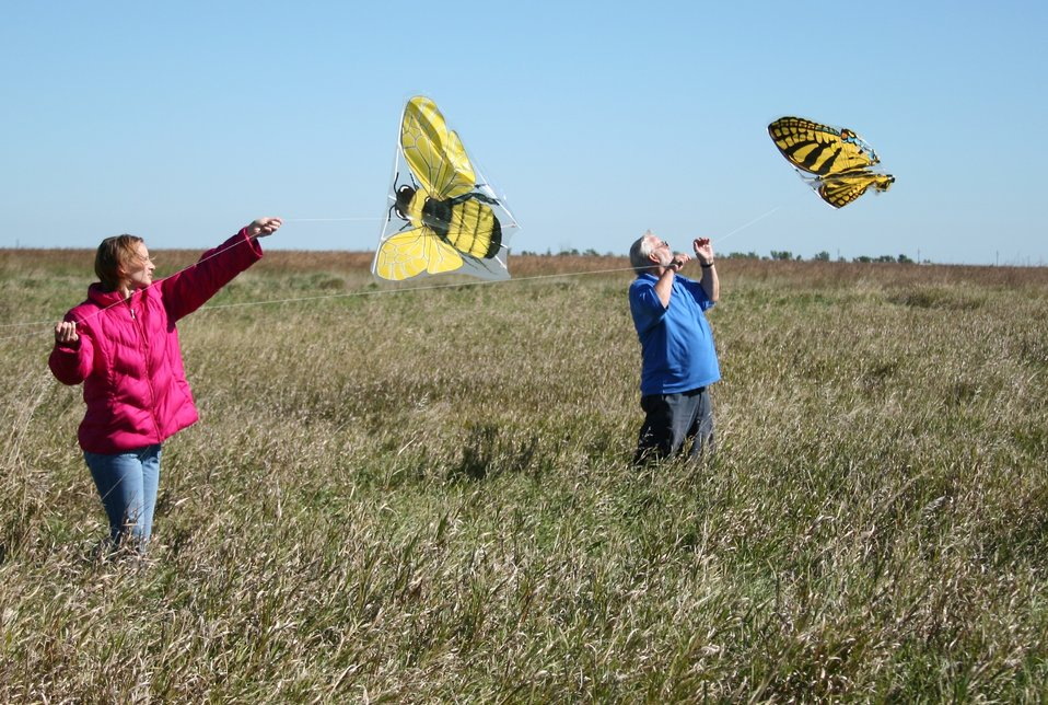 Visitors Fly Kites