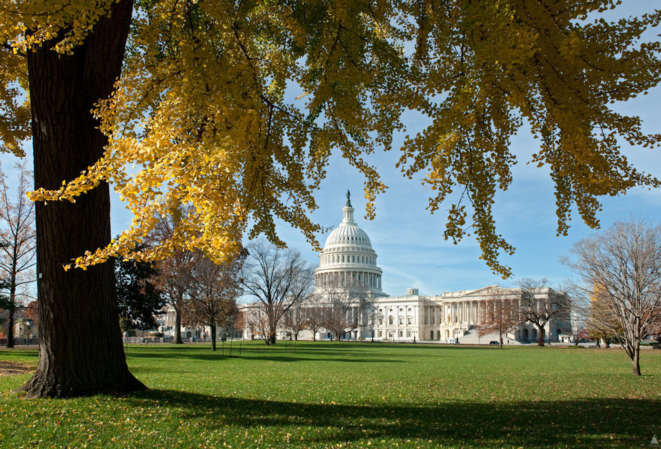 Fall Foliage at the U.S. Capitol