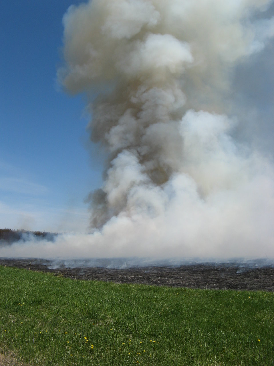 Smoke plume from a controlled burn at Iroquois National Wildlife Refuge