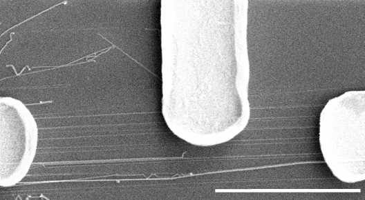 NIST Demos Industrial-Grade Nanowire Device Fabrication