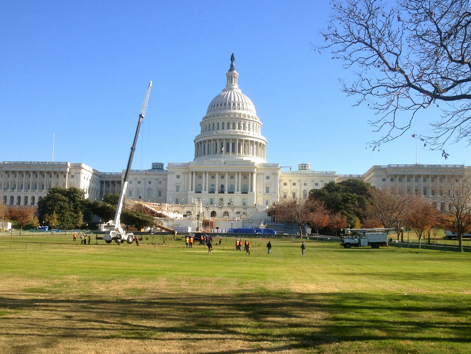 Capitol Christmas Tree nearly in place on West Front.