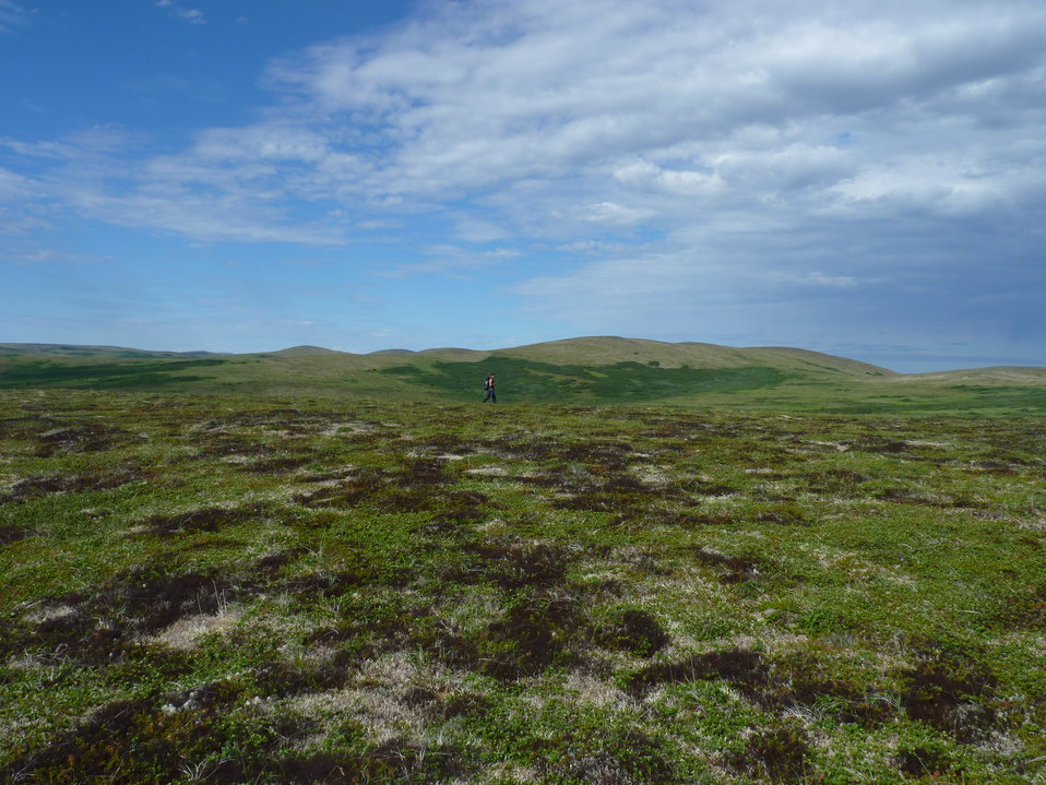 Andreafsky Wilderness