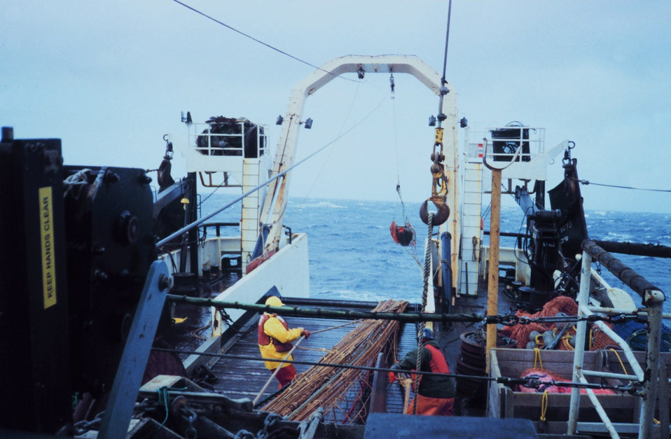 Hauling back the net at the end of a trawl.