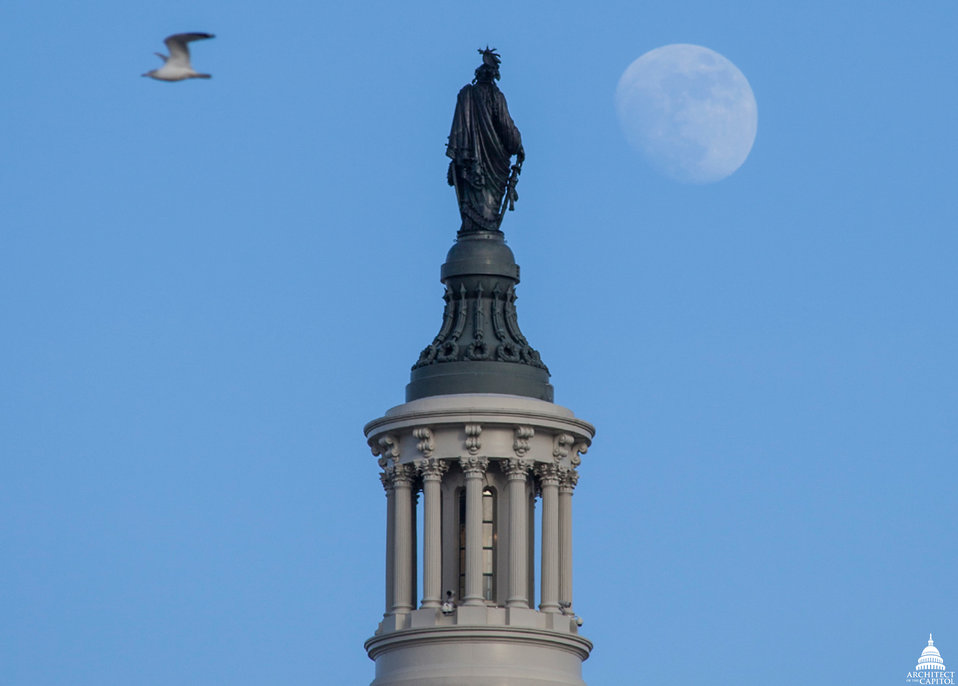 Statue of Freedom Moonrise