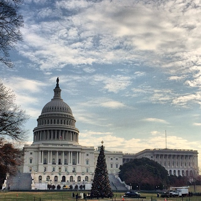 AOC staff prepare for tonight's 5 pm #CapitolTree lighting.