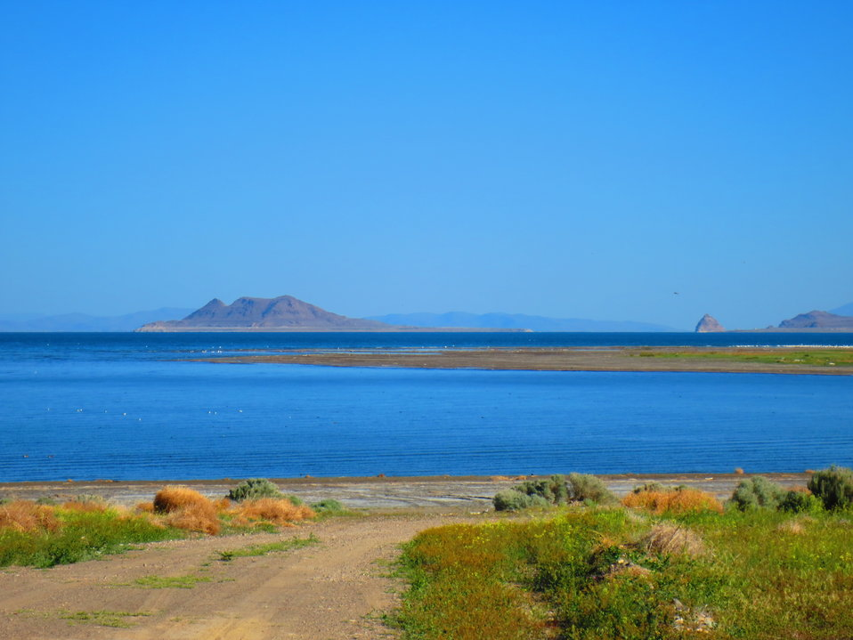 Anaho Island NWR and Pyramid Lake