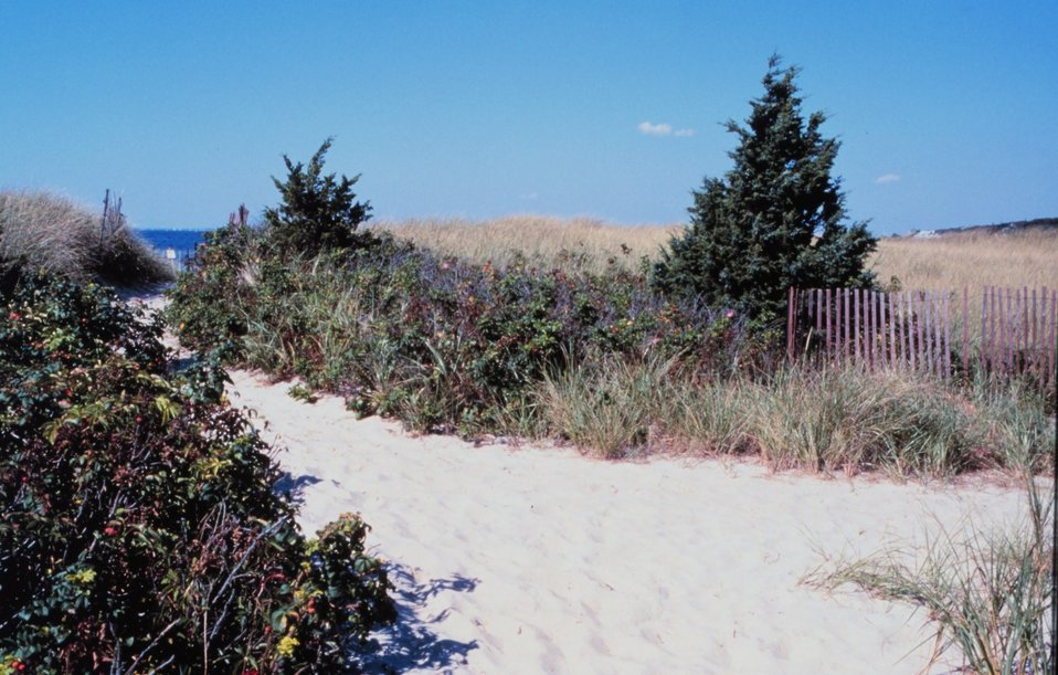Beach on Buzzards Bay, West Falmouth