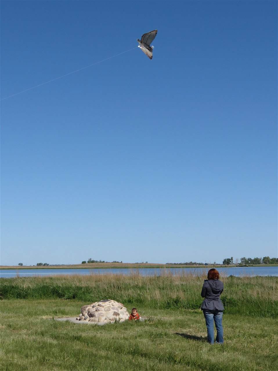 Kites in Flight 2012
