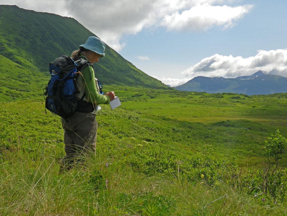 Volunteer botanist Stacy Studebaker