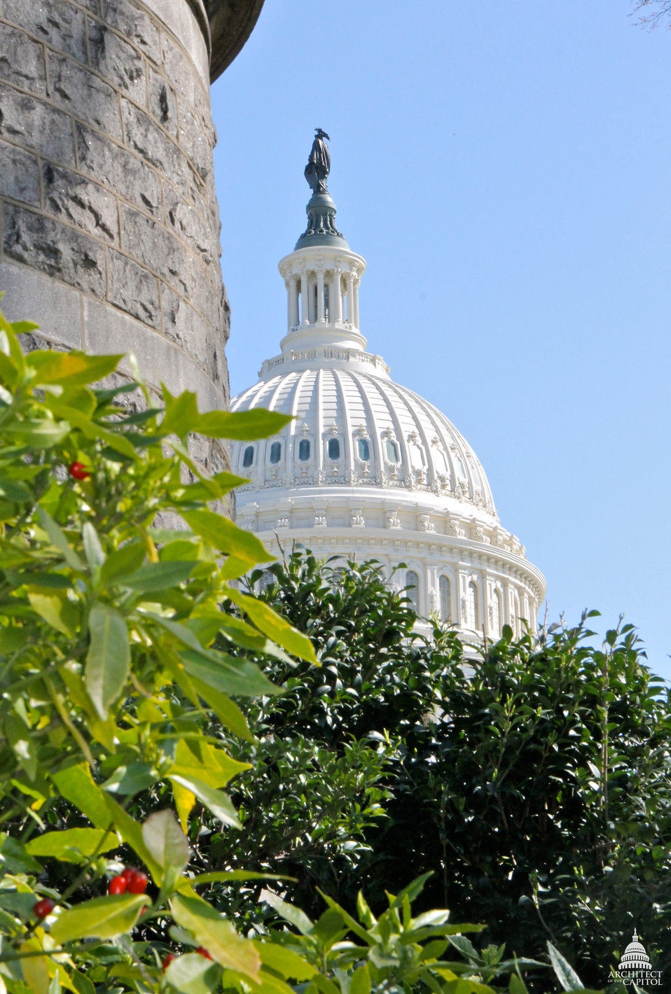 The Capitol Dome in Early Spring