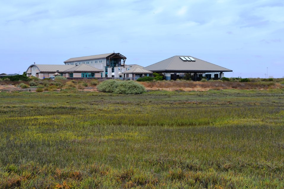 Chula Vista Nature Center on the Sweetwater Marsh Unit of the San Diego Bay NWR