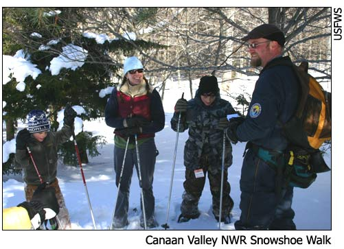 Interpretive snowshoe walk