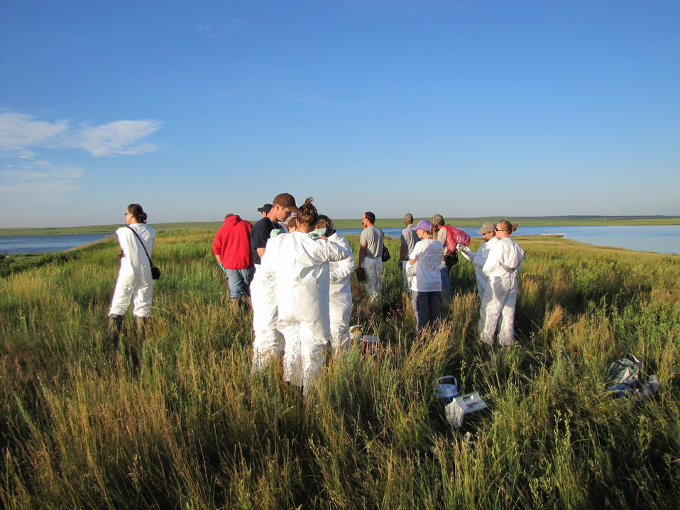 2010 Pelican Banding at Chase Lake NWR