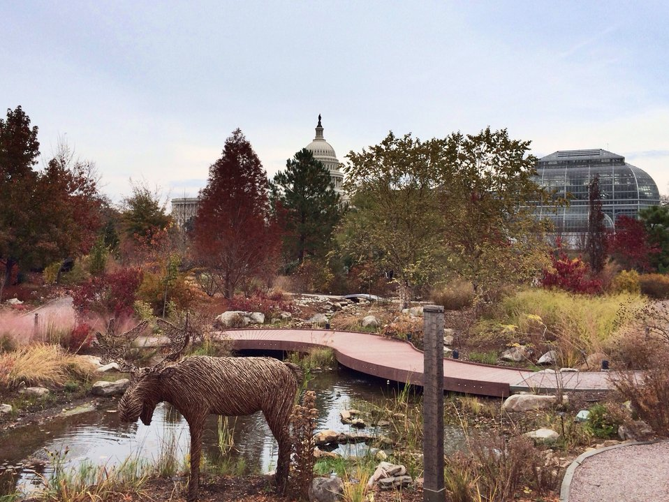 National Garden at US Botanic Garden on November Afternoon