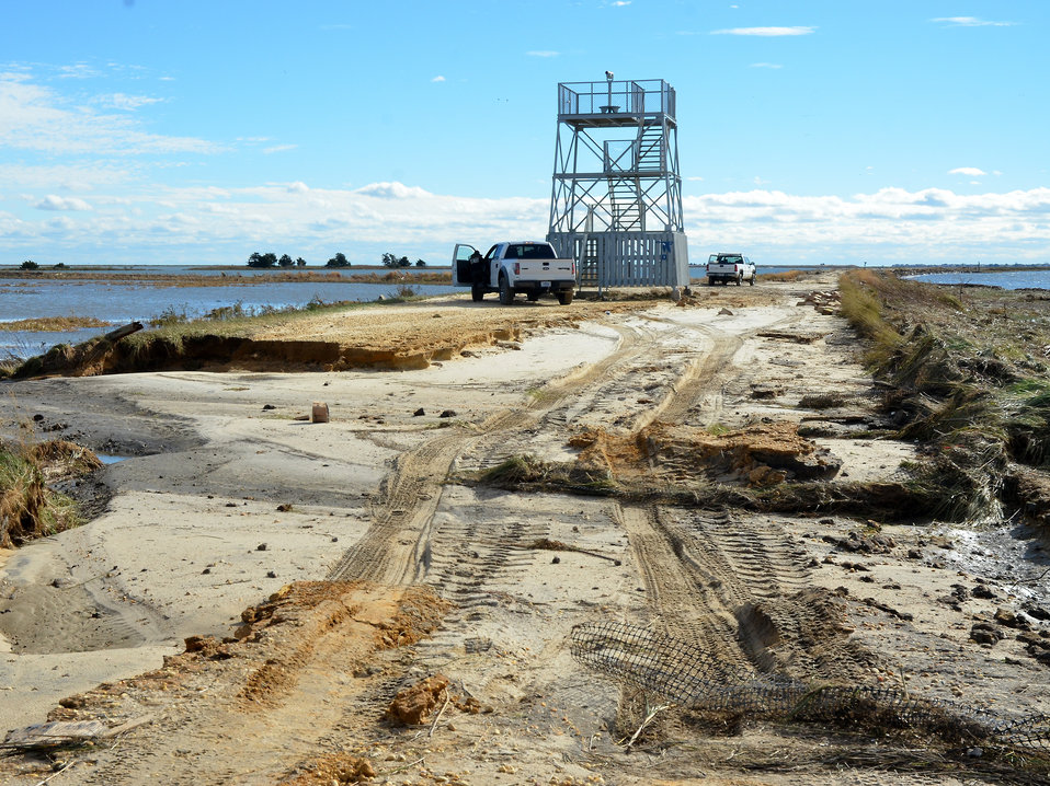 Effects of Hurricane Sandy at Edwin B. Forsythe National Wildlife Refuge (NJ)