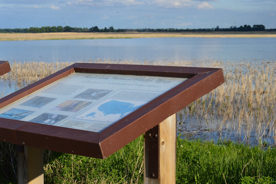 Interpretation signs at Sand Lake NWR