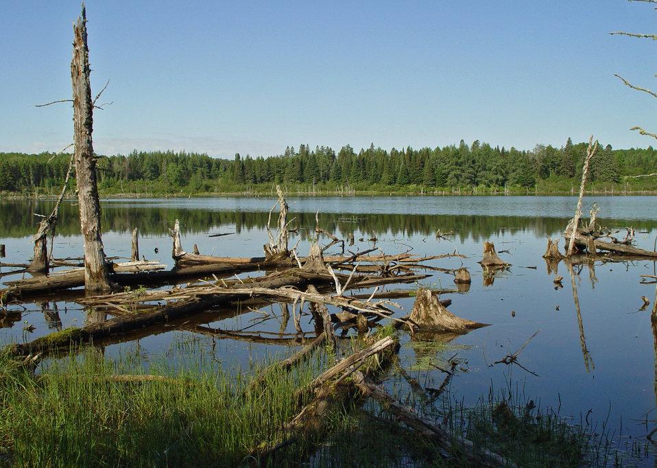 East Loring Lake