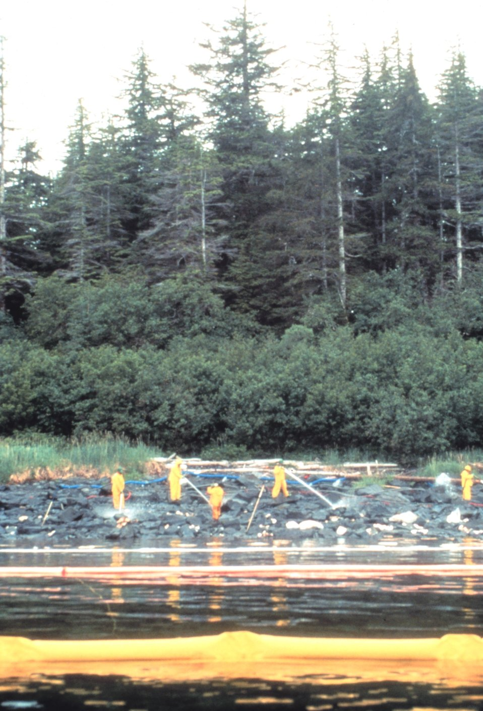Workers cleaning oiled shoreline
