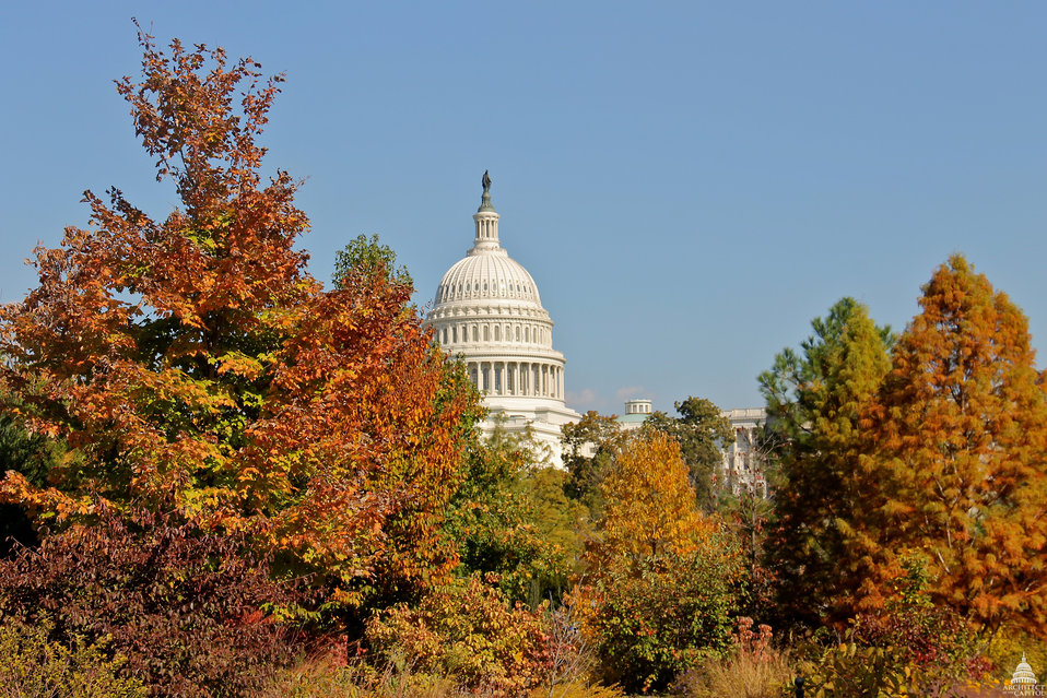 Fall 2012 at the U.S. Capitol
