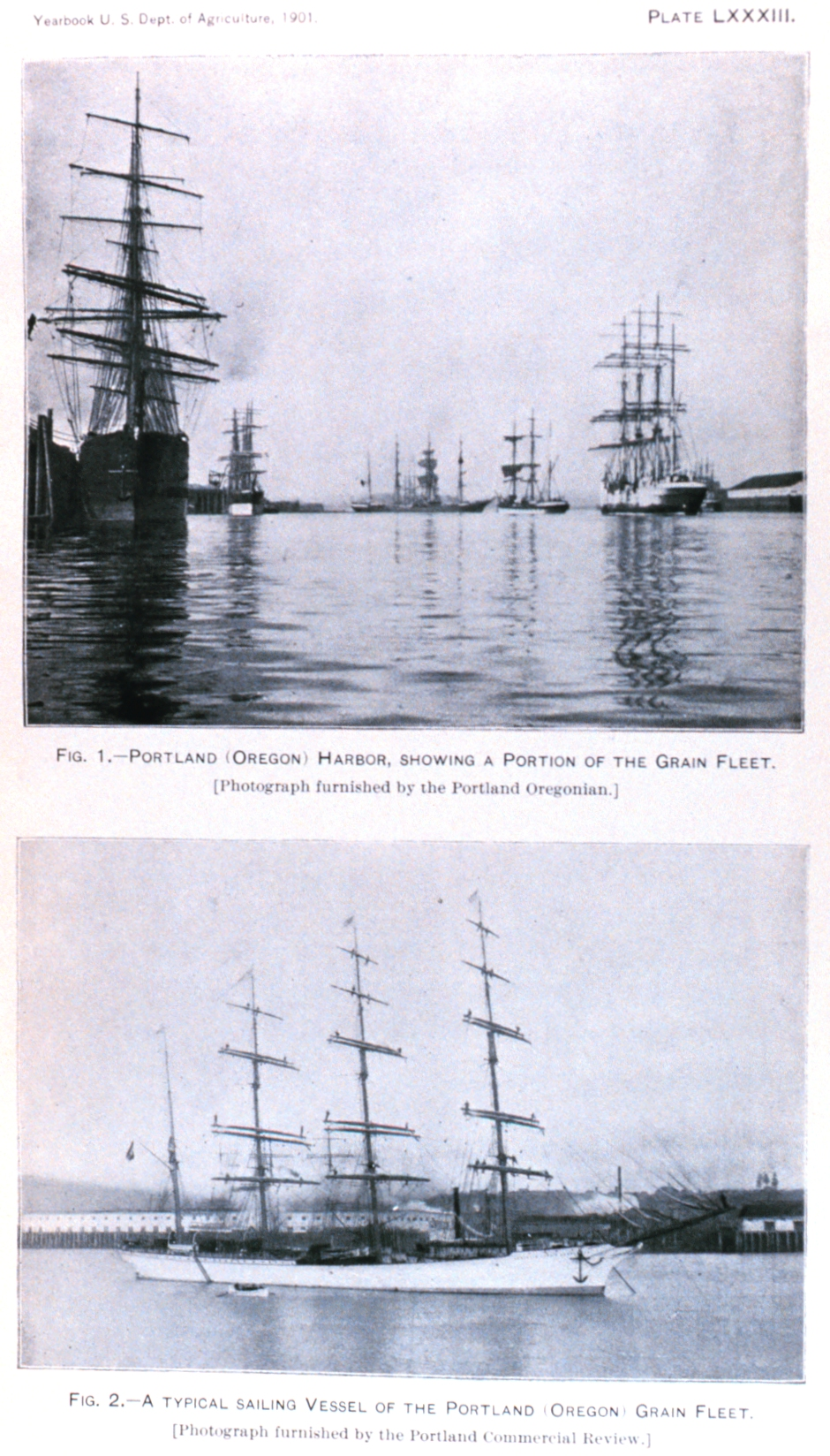 Portland, Oregon, waterfront.  In: 'Wheat Ports of the Pacific Coast' by Edwin  S. Holmes, Jr.  Published in: Yearbook of the United States Department of Agric ulture 1901.  Plate LXXXIII, p. 570. Library Call Number S21 .A2 .