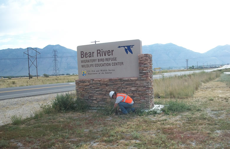 Weeding near the Bear River Migratory Bird Refuge sign