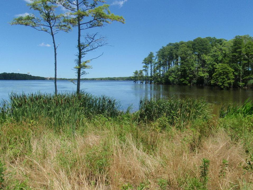 Lake Tecumseh