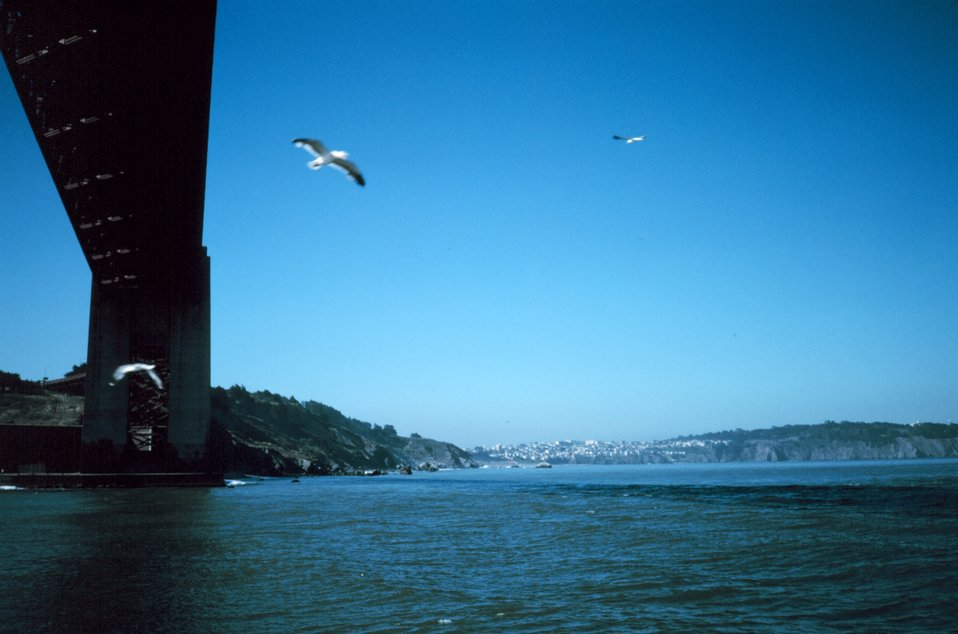 The Golden Gate Bridge as seen from a small boat at mid-span looking to the north.